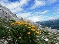 32027 Taibon Agordino, Province of Belluno, Italy - panoramio.jpg