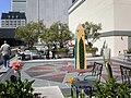 343 Sansome St. roof garden, SF 1.JPG