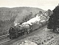 5712 Mt Vic 1954.jpg