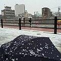 6 Shimozekimachi, Takaoka-shi, Toyama-ken 933-0021, Japan - panoramio (6).jpg