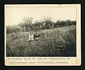 7. Near view of native vegetation on sand-steppe near Heidesheim, Germany, 1914 - Flickr - Smithsonian Institution.jpg