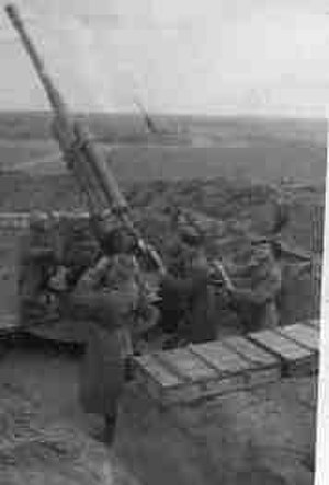 52nd Rocket Division - AA guns of the type used by the division in firing positions
