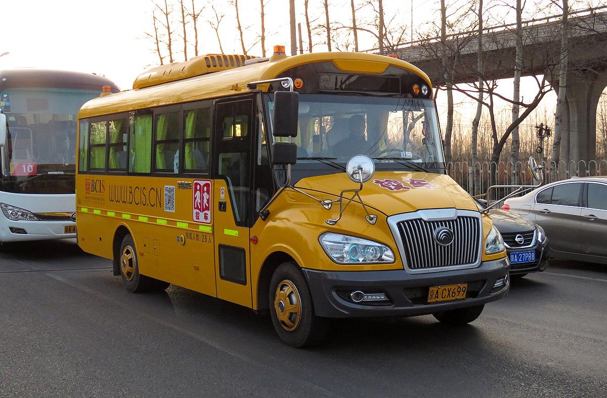 write 5 sentences about school bus