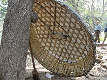 A coracle on rest.JPG