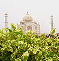A different view of taj.jpg