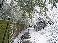A lovely walk in the snow down to Langstone Harbour - geograph.org.uk - 752519.jpg