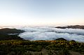 Above the Clouds (2679761575).jpg