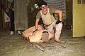 Abu Ghraib 76.jpg