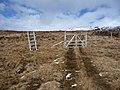 Access through a deer fence - geograph.org.uk - 1803880.jpg