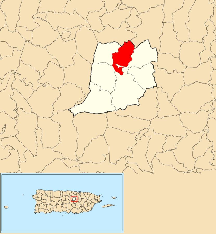Achiote, Naranjito, Puerto Rico