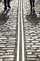 Across Rail (50387414).jpeg