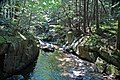 Adams Brook (near East Dover, Green Mountains, Vermont, USA) 10.jpg