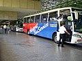 AeroportoGuarulhos Bus.jpg
