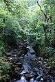 Afon Llugwy at Capel Curig - geograph.org.uk - 1340900.jpg