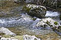 Agua - panoramio (10).jpg