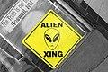 Alien Xing 4889601316.jpg
