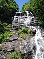 Amicalola Falls 2.jpg