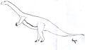 Ammosaurus.jpg