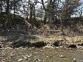 An uneven hillside at Rock Creek Crossing in Council Creek Crossing - 3 (b0b78b69343747a0805d86ffd40bac6b).JPG