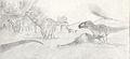 Andesaurus Giganotosaurus.jpg