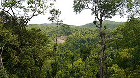 Anshi National Park (8890831927).jpg