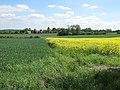 Arable fields - geograph.org.uk - 1325208.jpg