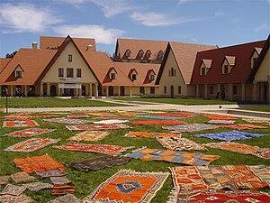 Trocknen von Teppichen auf der Uni-Wiese