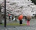 Arashiyama 2011-04 (5795732706).jpg
