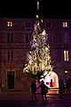 Arbre de Noël public à La Rochelle, Noël 2009 (1).JPG