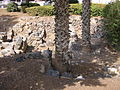Archeological garden, Tiberias (54).JPG