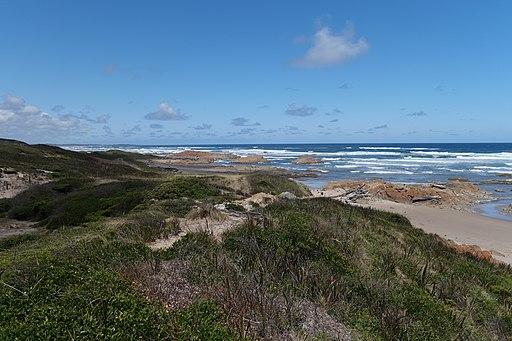 Arthur-Pieman Conservation Area, Tasmania 25