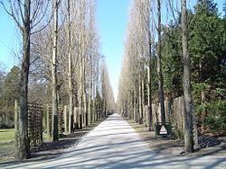 Assistens Kirkegård 1.jpg