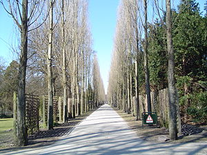 Assistens Cemetery (Copenhagen) - Image: Assistens Kirkegård 1