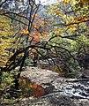 Autumn colors at Guanmen Mountain (1785068412).jpg