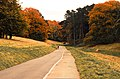 Autumn road (30773052316).jpg