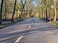 Avenue Fontenay Paris 2.jpg