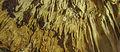 BELUM CAVES-Dr. Murali Mohan Gurram (84).jpg