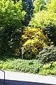 Baden Baden - View West II.jpg