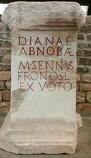 Abnoba - The altar to Diana Abnoba at Badenweiler