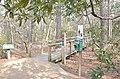 Bald Cypress Trail First Landing State Park-sign (33208543265).jpg