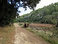 Barranc d'Algendar (23556071458).jpg