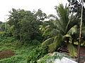 Batangasjf2040 07.JPG