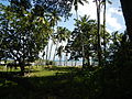 Bauan,Mabini,Batangasjf8564 01.JPG