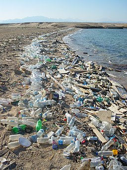 Beach in Sharm el-Naga03
