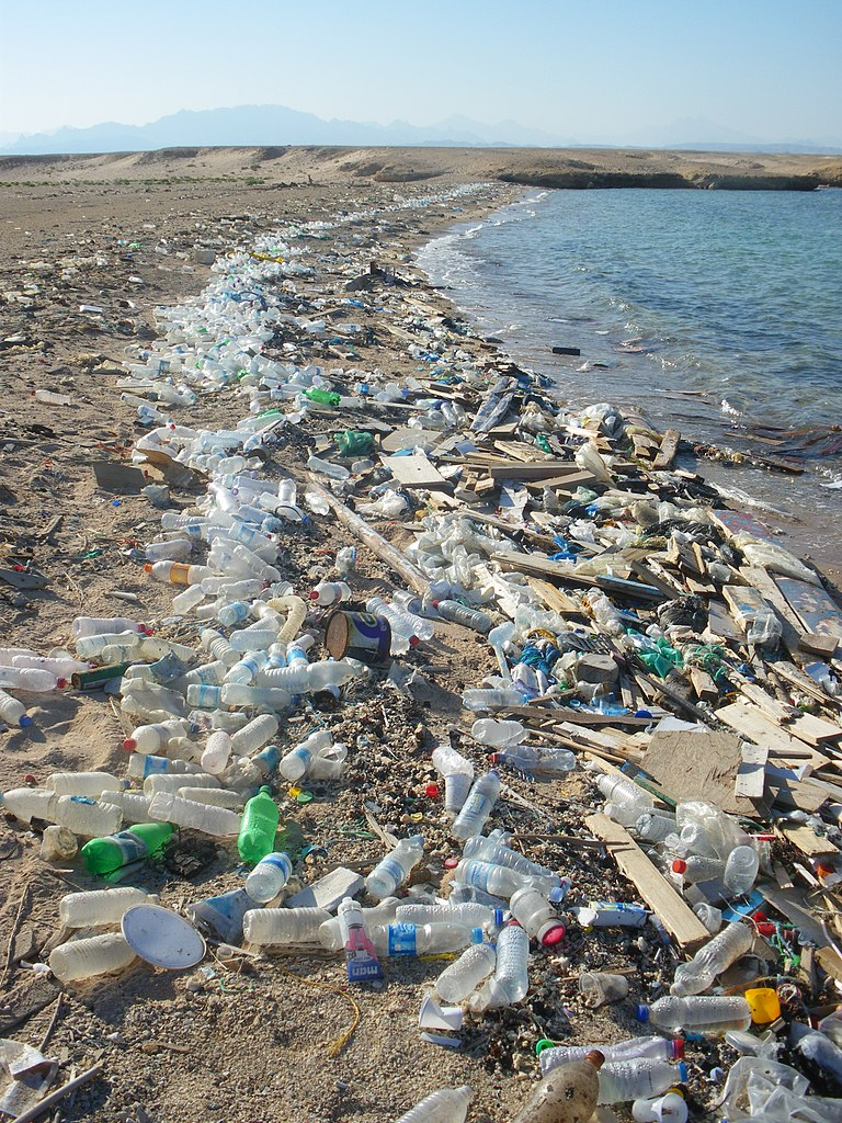 Grober Plastikmüll am Ufer des Roten Meeres (nahe Safaga, Ägypten), Foto: Vberger 2010, Wikiepedia
