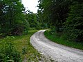 Bei Kaltohmfeld Richtung Holungen - panoramio (1).jpg