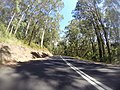 Benandarah NSW 2536, Australia - panoramio (12).jpg