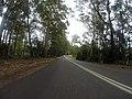 Benandarah NSW 2536, Australia - panoramio (84).jpg