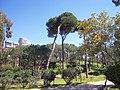 Beyrouth bois des pins 02.jpg