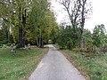 Bikūnai 28402, Lithuania - panoramio (10).jpg